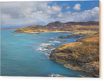 View From Ardnamurchan Wood Print by David Hare