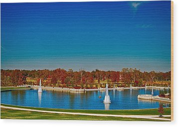 Wood Print featuring the photograph View From Art Hill Forest Park Missouri by Peggy Franz