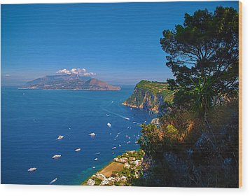 View From Capri Wood Print by Dany Lison