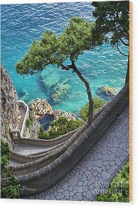 View From Capri.italy Wood Print by Jennie Breeze