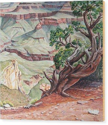 View From Cedar Ridge Trail Wood Print