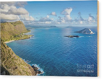 Wood Print featuring the photograph View From Makapuu Point by Aloha Art