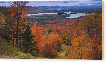 View From Mccauley Mountain II Wood Print
