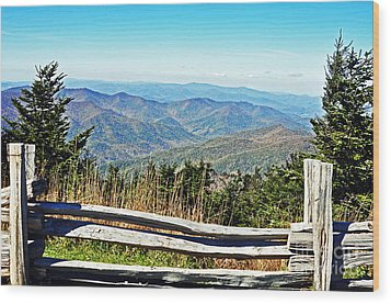 View From Mt. Mitchell Summit Wood Print