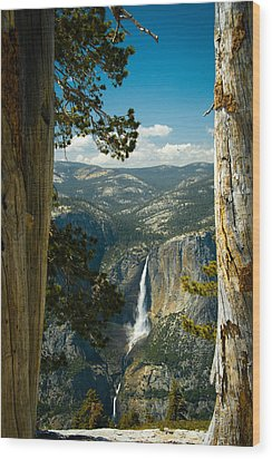 View From Sentinel Dome Wood Print