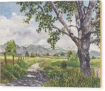 View From Stearns Lake Wood Print