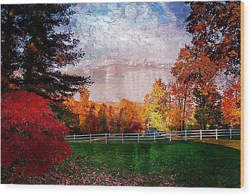 View From Sugarland Heights Wood Print by Julie Dant