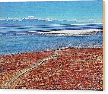 View From The Battery At Fort Ebey Wood Print