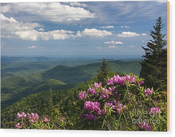 View From The Blue Ridge Parkway  Spring 2010 Wood Print