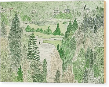 View From The Dam Wood Print