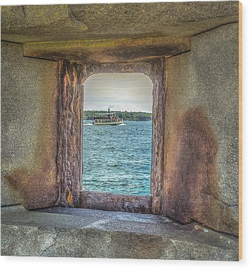 View From The Fort Wood Print by Jane Luxton