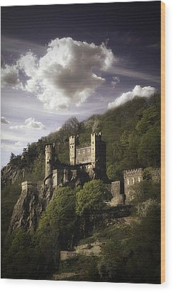 View From The Rhine River Wood Print