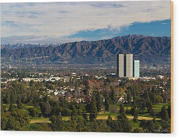 View From Universal Studios Hollywood Wood Print by Heidi Smith