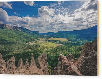 View From Wolf Creek Pass Wood Print by Karen Stephenson