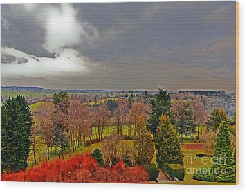 View Of Belgium Wood Print
