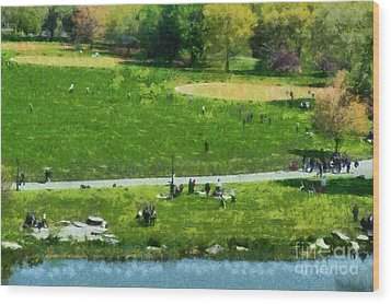 View Of Great Lawn In Central Park Wood Print by George Atsametakis