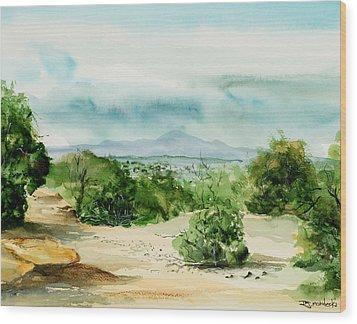 View Of Laplata Mountains Wood Print