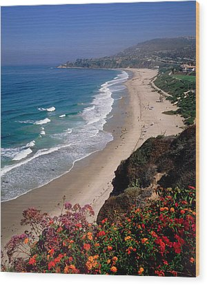 View Of Salt Creek Beach Wood Print