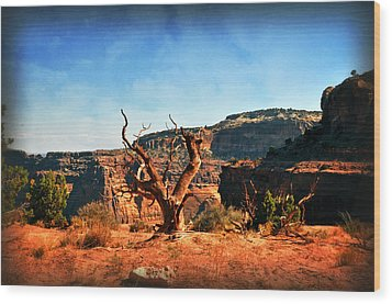 View Of The Canyon Wood Print by Marty Koch