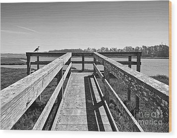 View Of The Elkhorn Slough From A Platform.  Wood Print by Jamie Pham