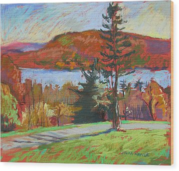 Wood Print featuring the painting View Of The Lake by Linda Novick