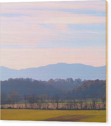 Wood Print featuring the photograph View Of The Valley by Candice Trimble