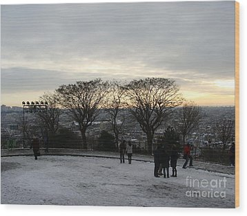 View Over Paris Wood Print