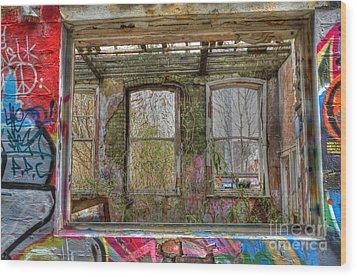 View Through A Window Wood Print by David Birchall