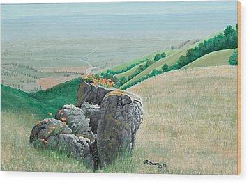 Views From Canada De Los Osos #1 Wood Print
