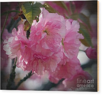 Wood Print featuring the photograph Vignette Cherry Blossom by Gena Weiser