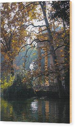 Wood Print featuring the photograph Villa Borghese Park by Glenn DiPaola