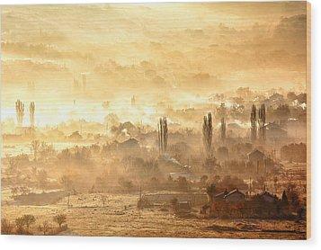Village Of Gold Wood Print by Evgeni Dinev