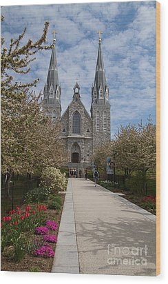 Villanova University Main Chapel  Wood Print by William Norton
