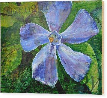 Vinca Joy Wood Print by Lisa Fiedler Jaworski