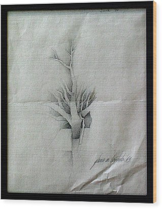 Vine And Branches A 1969 Wood Print by Glenn Bautista