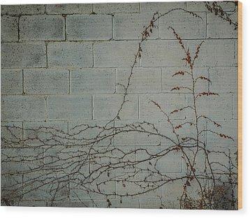Vines Wood Print by Carl Engman