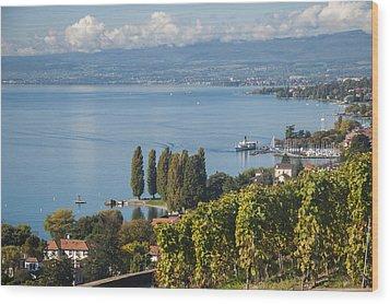 Vines Over Lake Geneva Wood Print by Rob Hemphill
