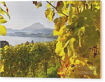 Vineyard At Lake Lucerne Wood Print by George Oze