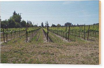 Vineyard Wood Print