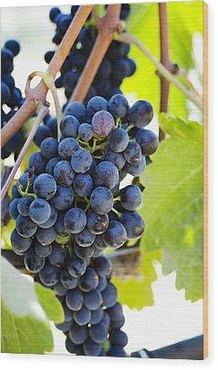 Vineyard Grapes Wood Print by Charmian Vistaunet