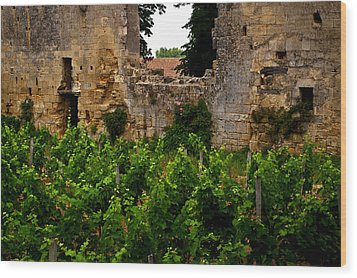 Vineyard In The Ruins Wood Print by Christine Burdine