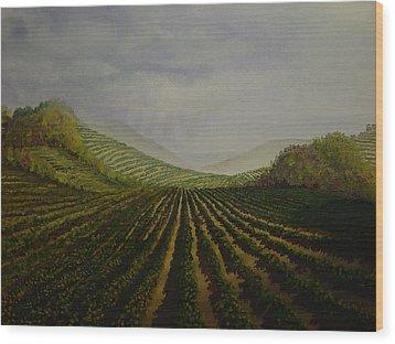 Vineyard Wood Print by Mark Golomb