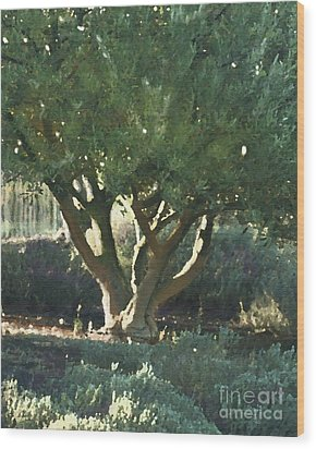 Vineyard Olive Wood Print by Artist and Photographer Laura Wrede