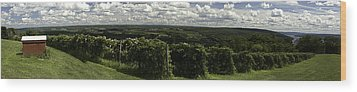 Vineyard On Keuka Lake Wood Print by Richard Engelbrecht
