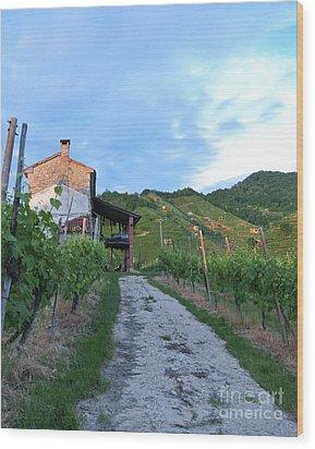 Vineyard Path Wood Print by Sarah Christian