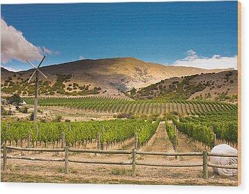 Vineyard Wood Print by Ricardo Nishimura