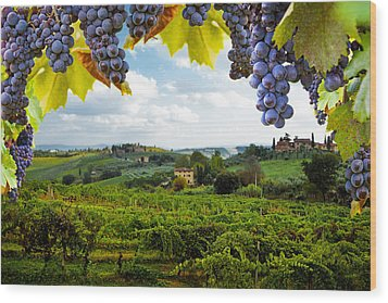 Vineyards In San Gimignano Italy Wood Print