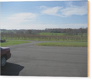 Vineyards In Va - 121230 Wood Print by DC Photographer
