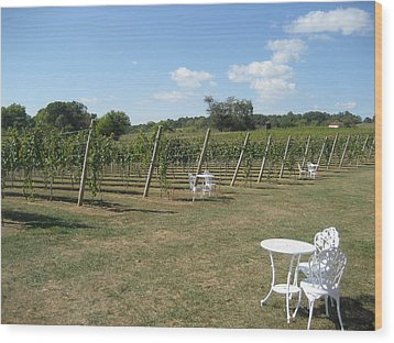 Vineyards In Va - 121240 Wood Print by DC Photographer