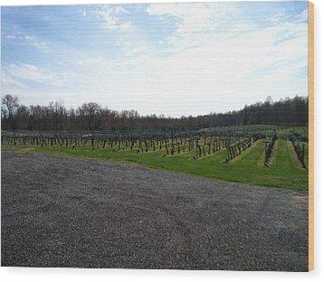 Vineyards In Va - 121267 Wood Print by DC Photographer